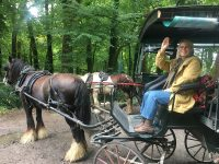 Southern-Tour_Jaunting-CAr