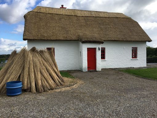 Southern-Tour_Thatching-2