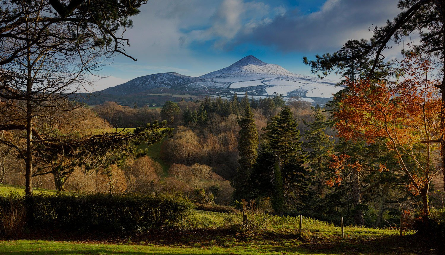 Meet The Makers Wicklow Sugarloaf Mountain